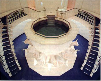A photo of the Mormon Washington Temple baptistry.