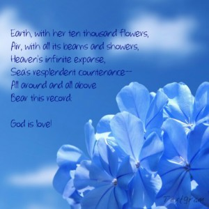 Blue flowers closeup and God is love quote