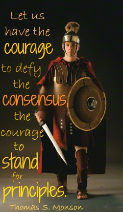 Courage Armor Monson
