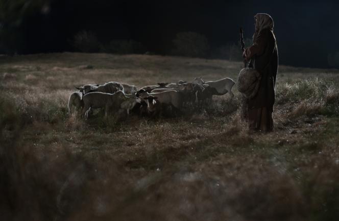 Shepherds watch their flocks by night.