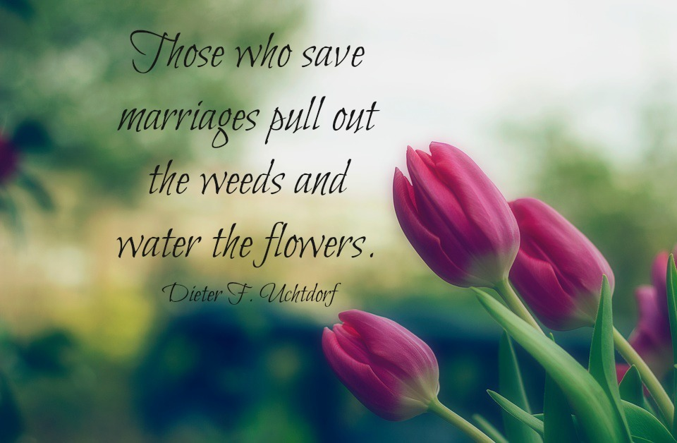 Those who save marriages pull out the weeds and water the flowers. Dieter F. Uchtdorf