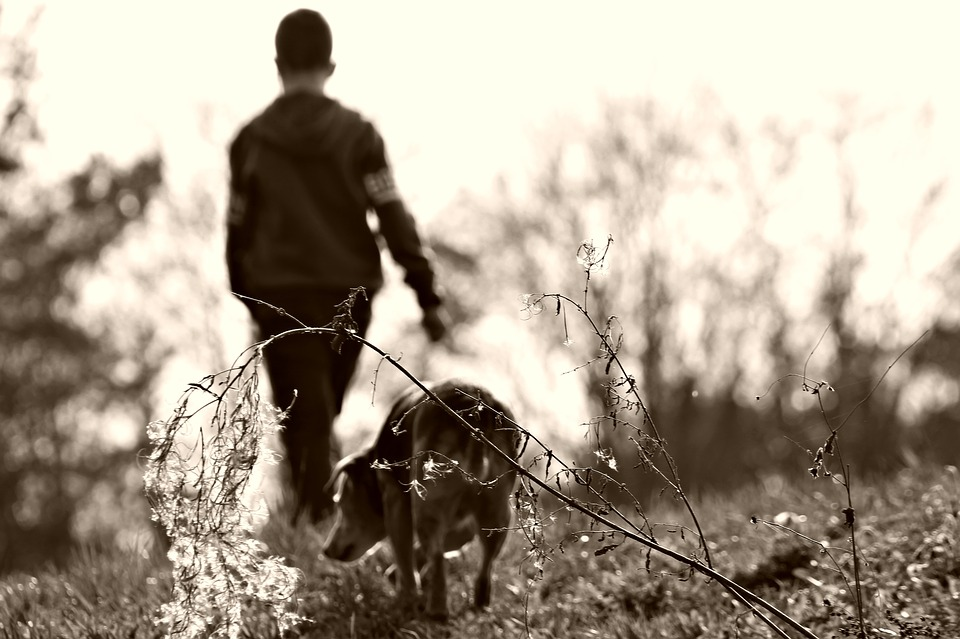What a Dog Taught Me About Love, Trust, Choice and Commitment