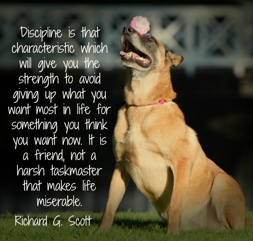 Discipline is that characteristic which will give you the strength to avoid giving up what you want most in life for something you think you want now. It is a friend, not a harsh taskmaster that makes life miserable. Richard G. Scott